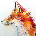 Foxaaw