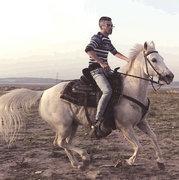 Arabian Dude